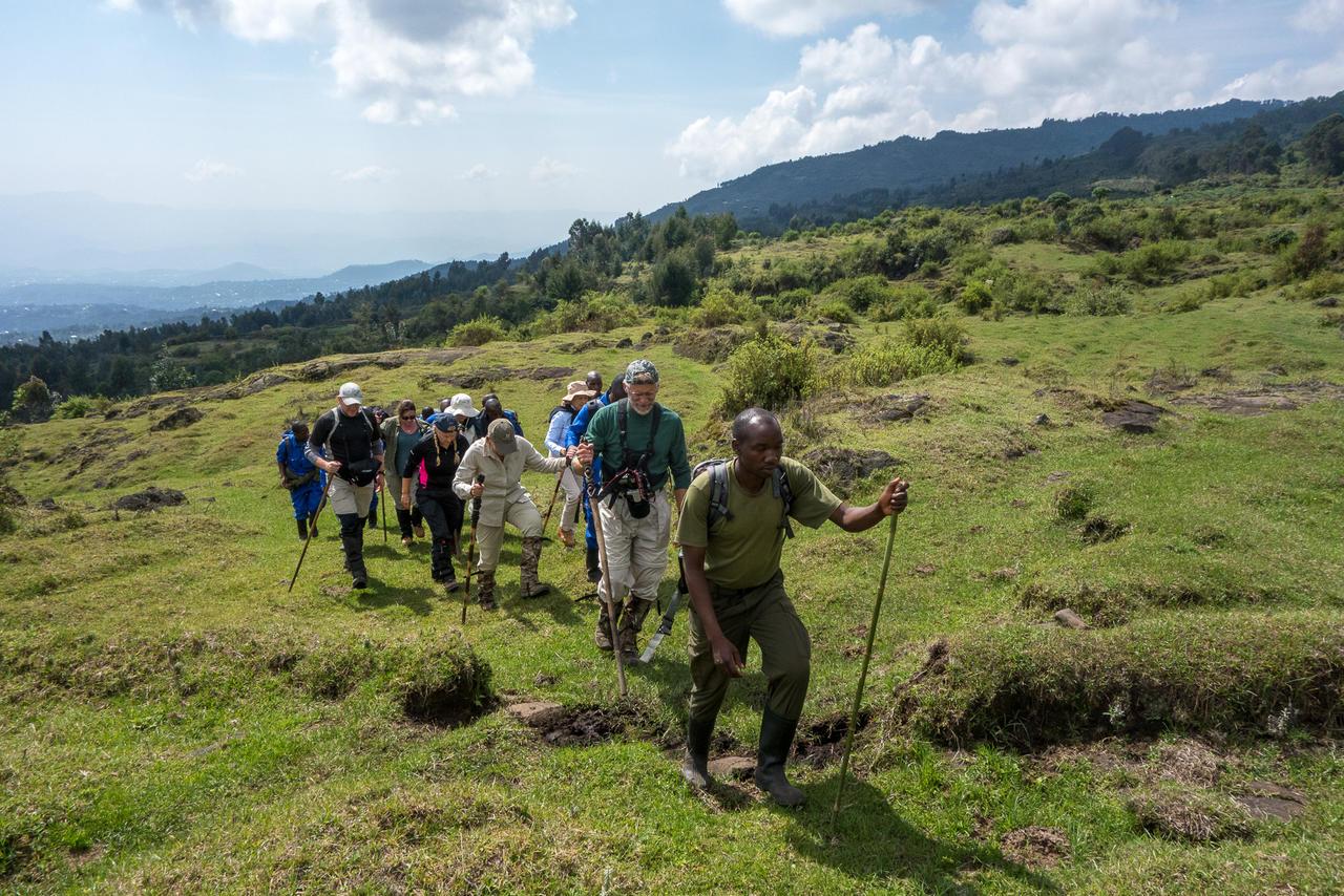 Trekking for Rwanda Gorillas