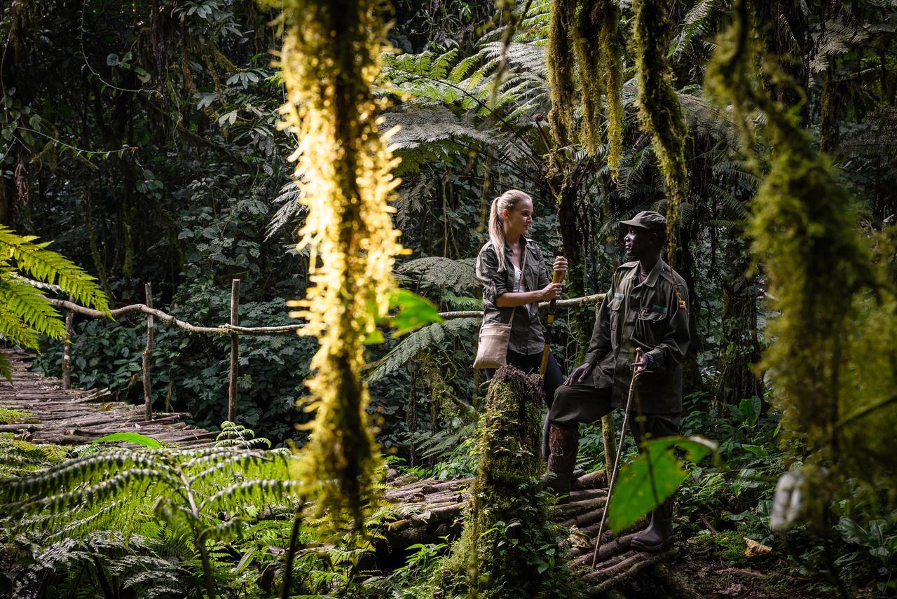 Rwanda Gorillas trekking guide